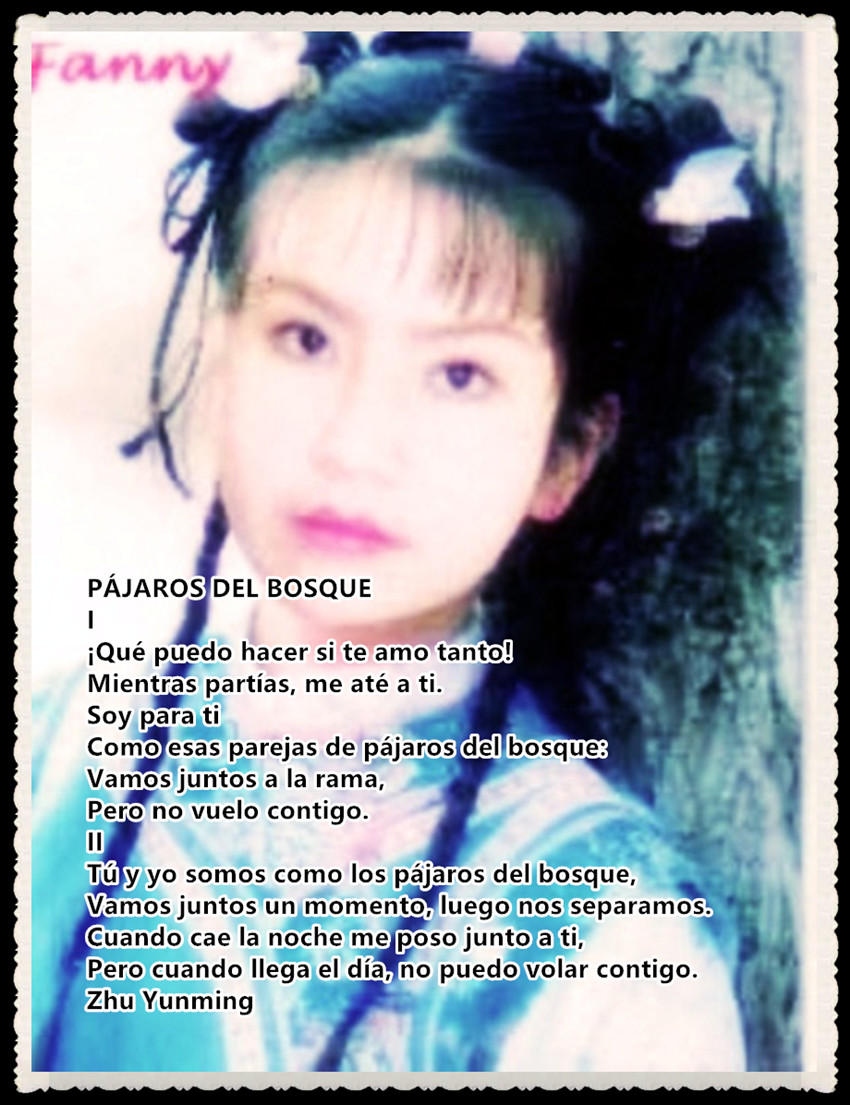 PÁJAROS DEL BOSQUE poesía china - fotografía fanny jem wong poeta peruana