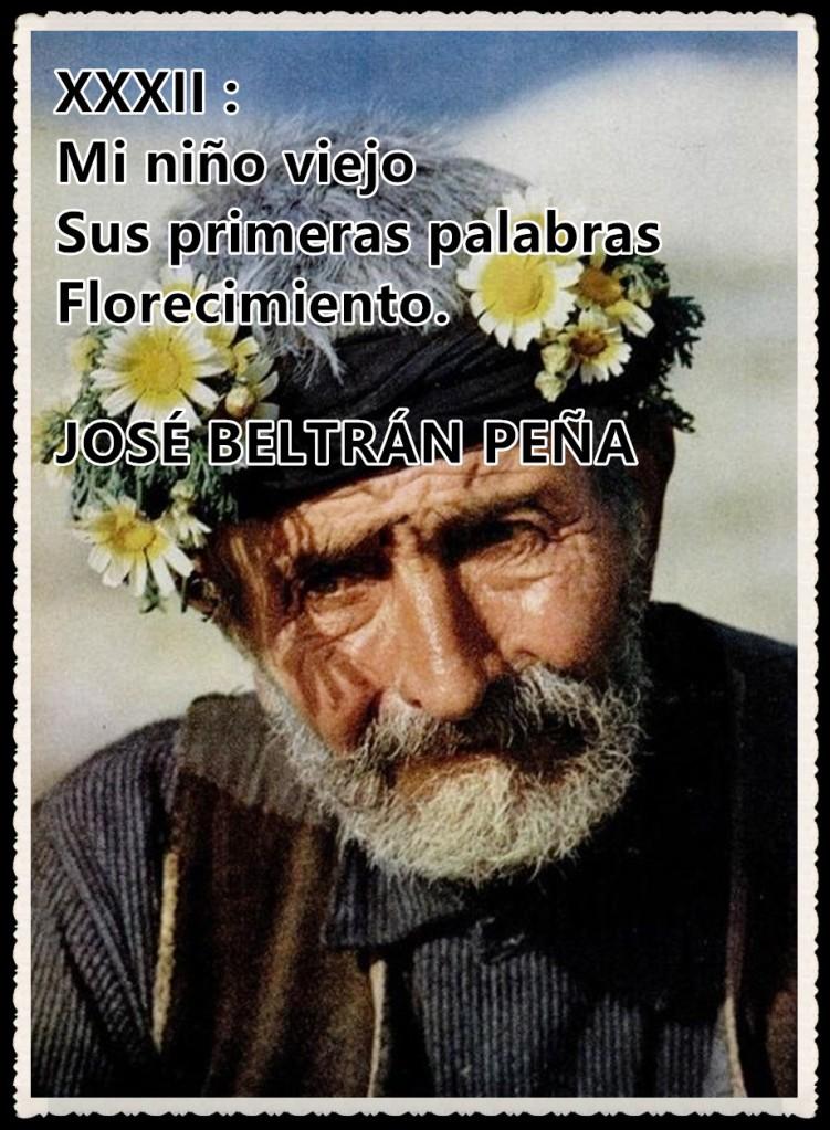HAIKU XXXII : Mi niño viejo / Sus primeras palabras / Florecimiento. JOSÉ BELTRÁN PEÑA